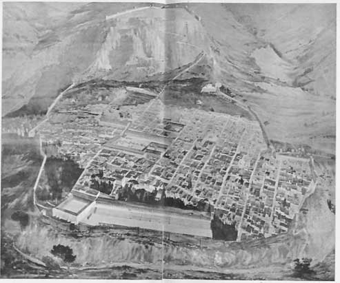 FIG. 8. PRIENE, PANORAMA OF THE TOWN